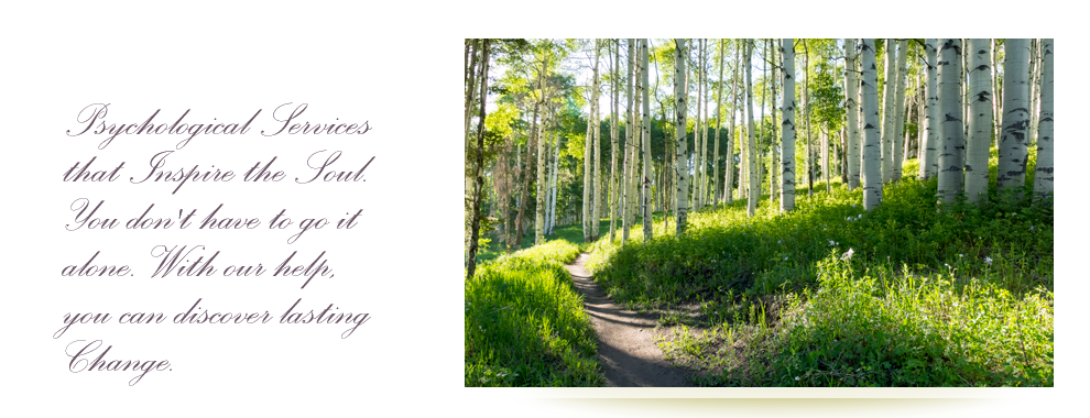 Path through aspen trees.